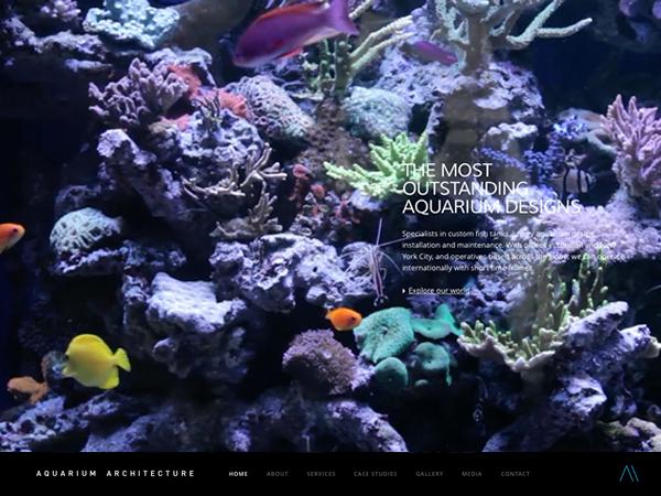 aquariumarchitecture