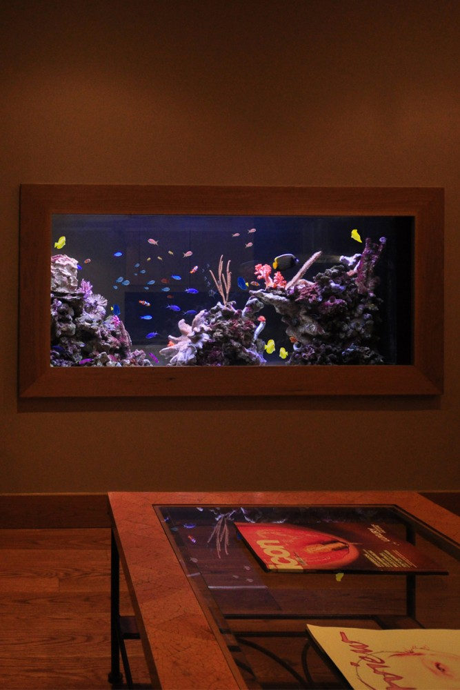 Aquarium Living Room Decor: Luxurious Custom Made Aquarium
