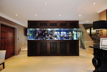 aquarium-architecture-footballers-pad-stephen-ireland-02-1280x8001