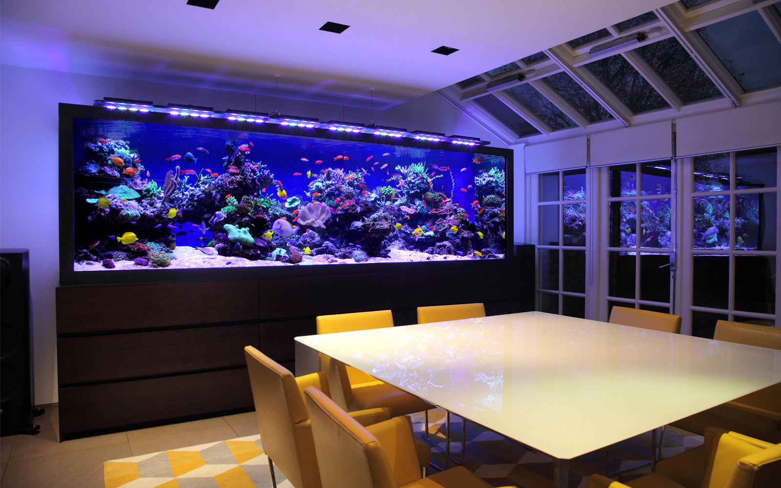 Home Aquarium Design Ideas: Bespoke Aquarium Design